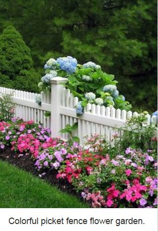 Lovely flowered picket fence