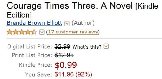 Get my novel for only 99 cents for a few days